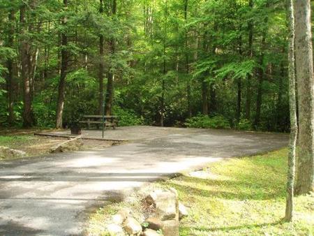 Level tent site near creek
