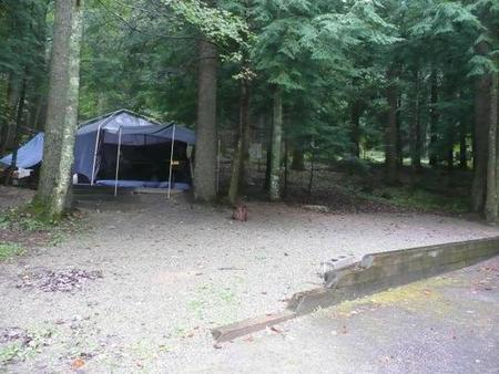 Tent site with stairs in woodsNear restrooms