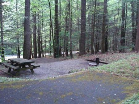 Tent site with stairs and parking for one vehicle onlyTent site with stairs in woods.  Parking for one vehicle only.