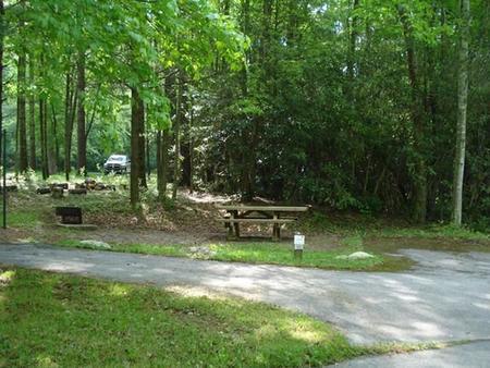 Raccoon Branch CampgroundTent, pop-up, or van site