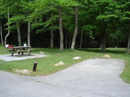 Raccoon Branch CampgroundLarge open area near creek