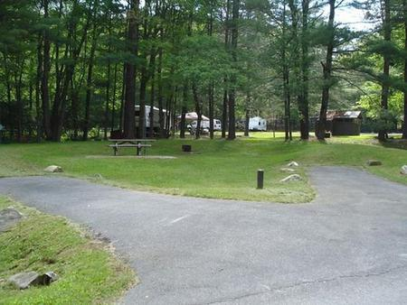 Raccoon Branch CampgroundSunny open area