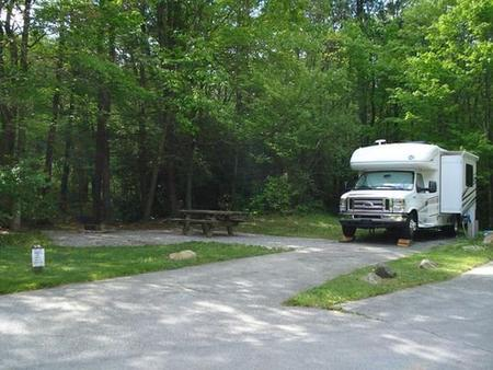 Raccoon Branch CampgroundMost popular site.  Easy back in site with electric, near creek and woods