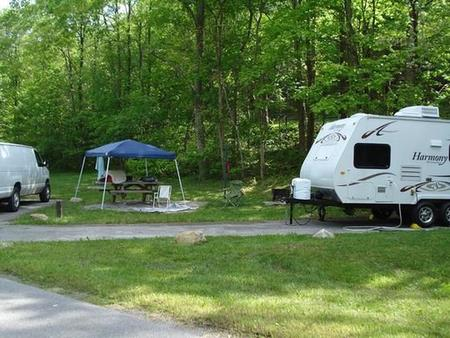 Raccoon Branch CampgroundSunny site with electric and easy back-in