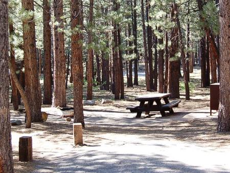 Preview photo of Old Shady Rest Campground