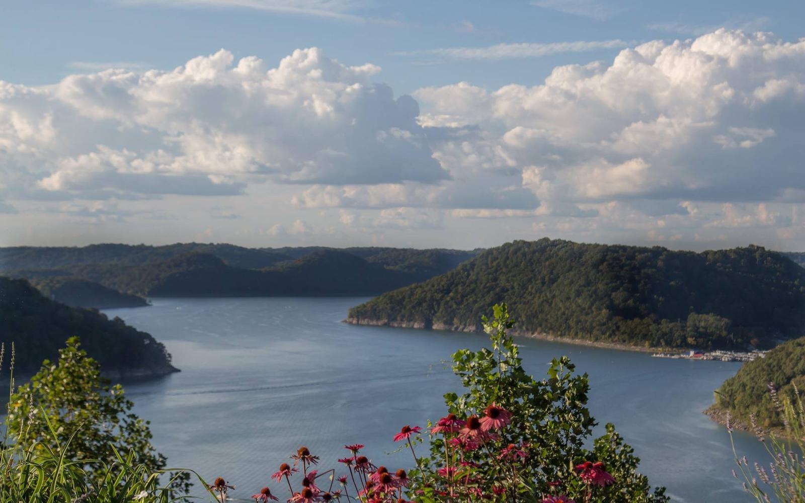 overlooking the lake with flowerlake overlook