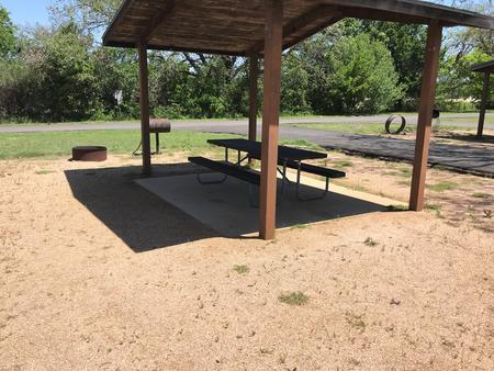 Covered picnic table, grill, and fire ring