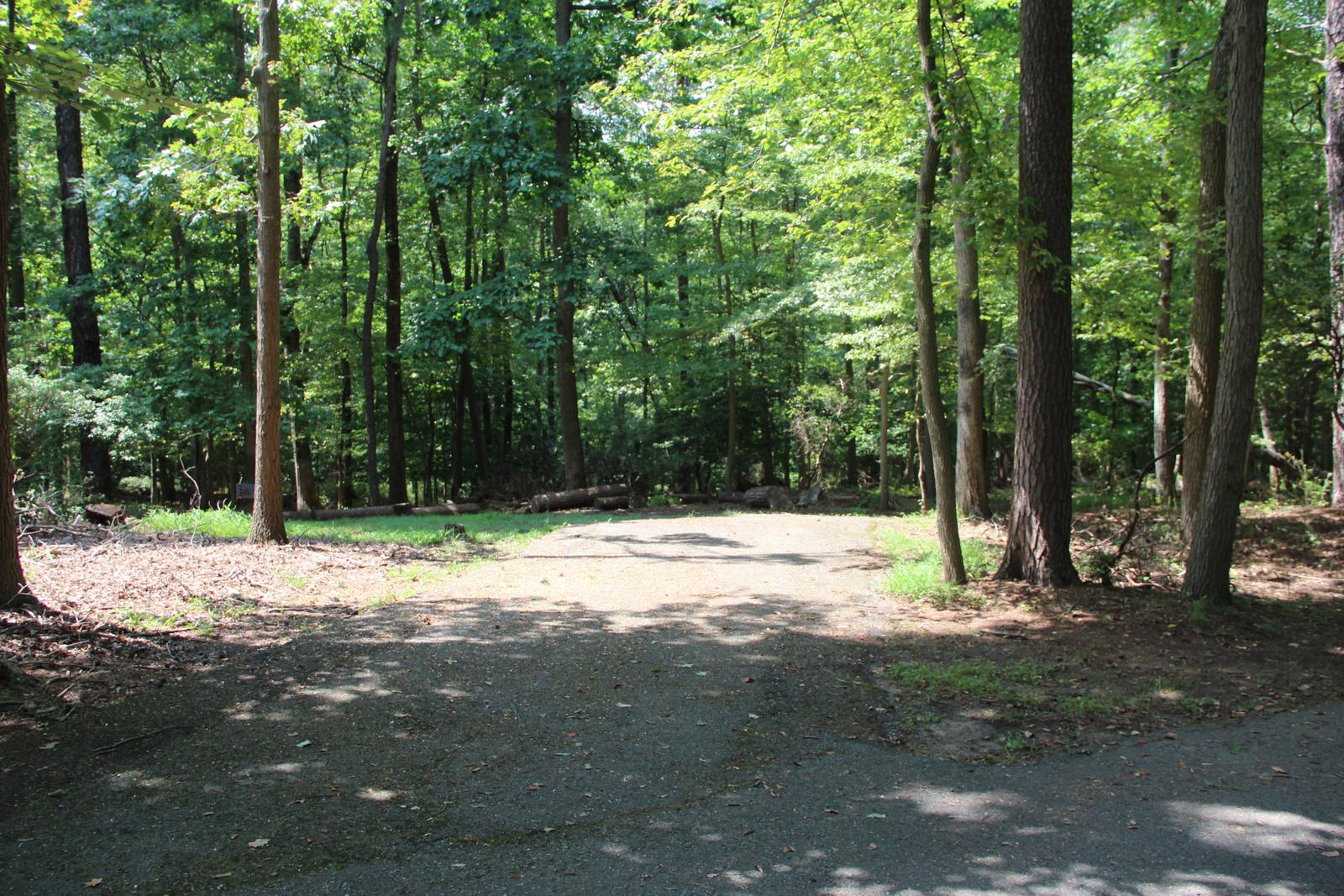 Greenbelt Park campground Site 25