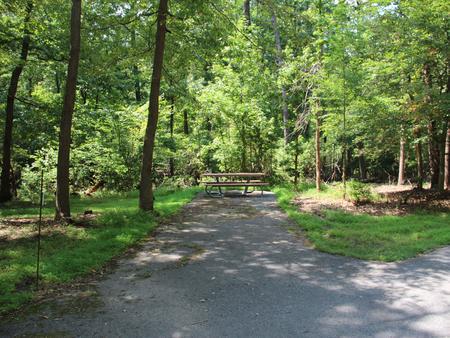 Greenbelt Park campground Site 28