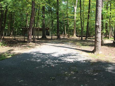 Greenbelt Park campground Site 30