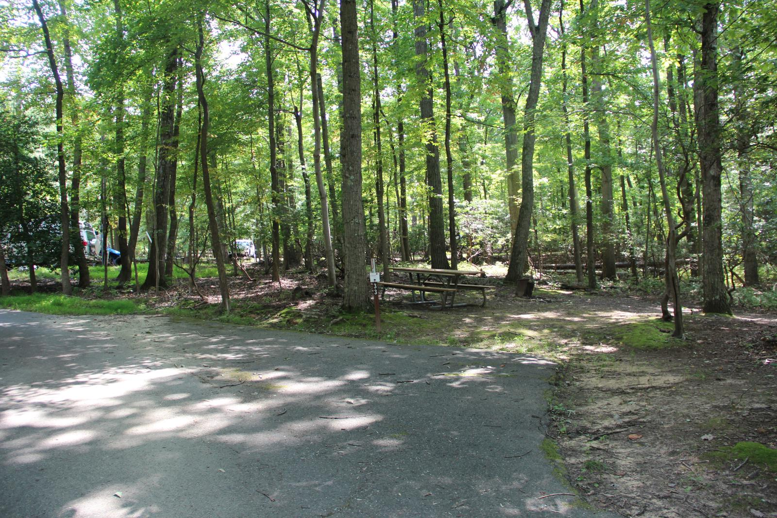 Greenbelt Park campground Site 33