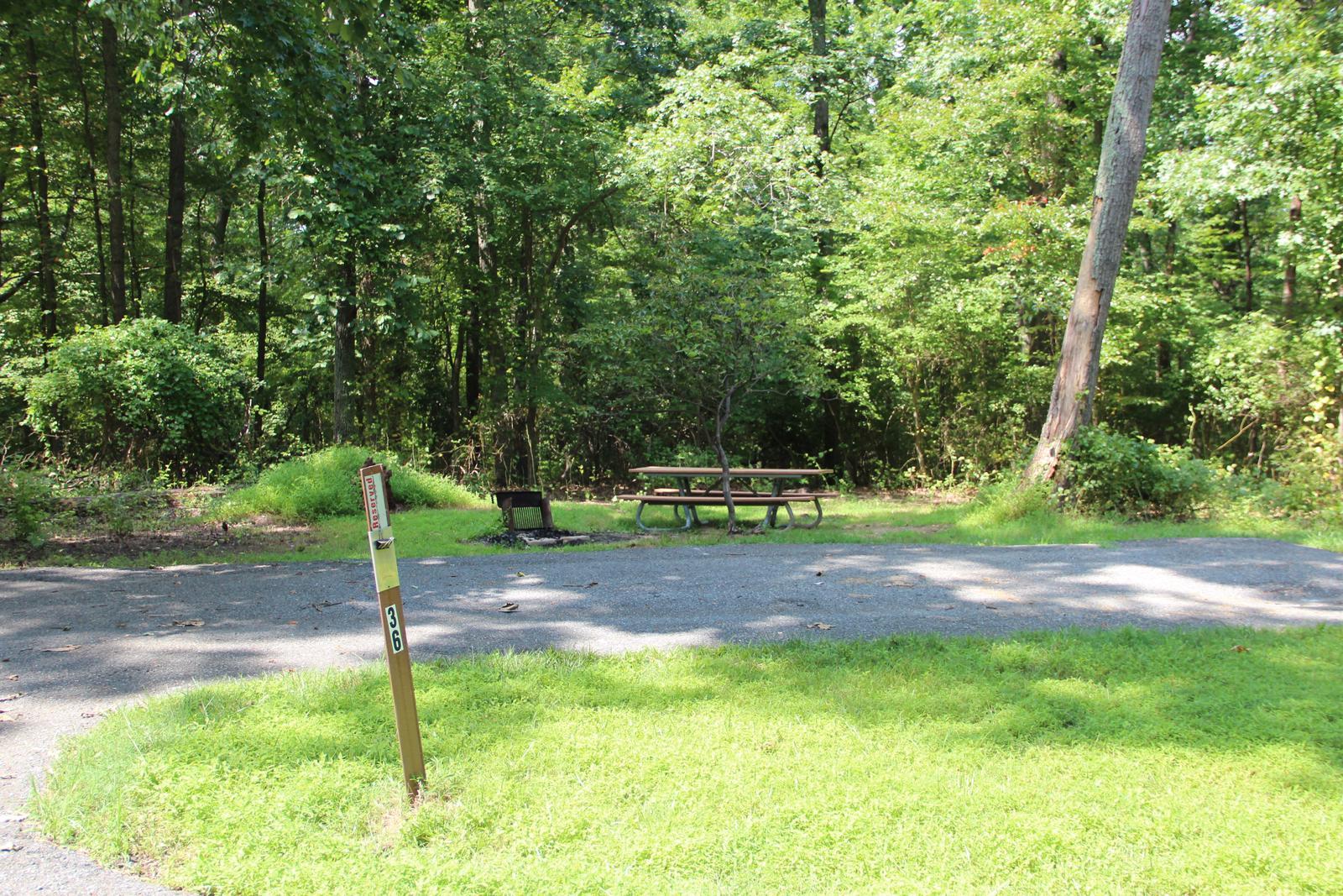 Greenbelt Park campground Site 36