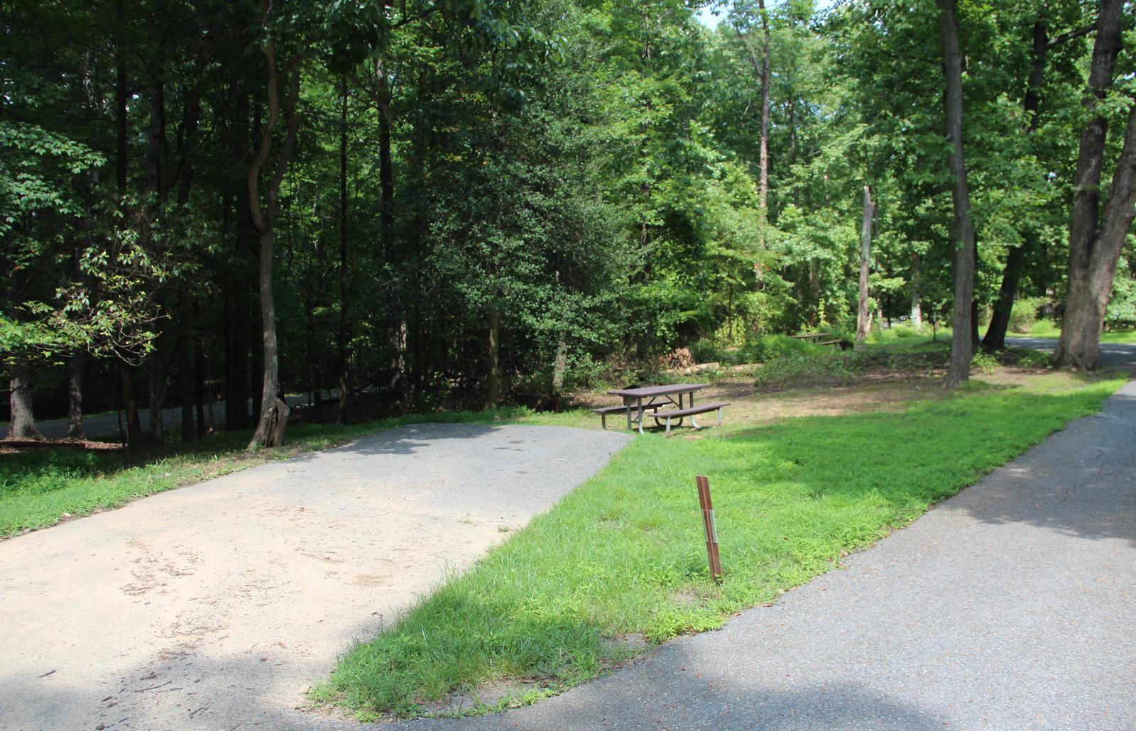 Greenbelt Park campground Site 38