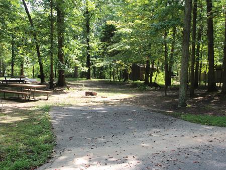 Greenbelt Park campground Site 42