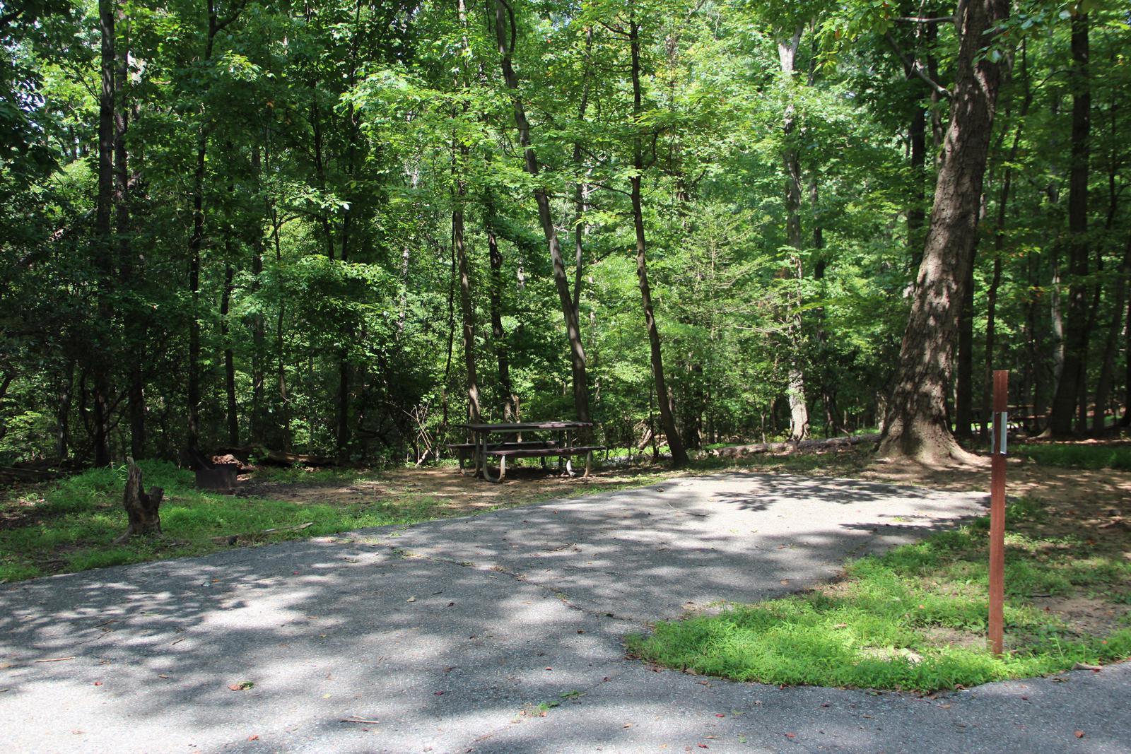 Greenbelt Park campground Site 44