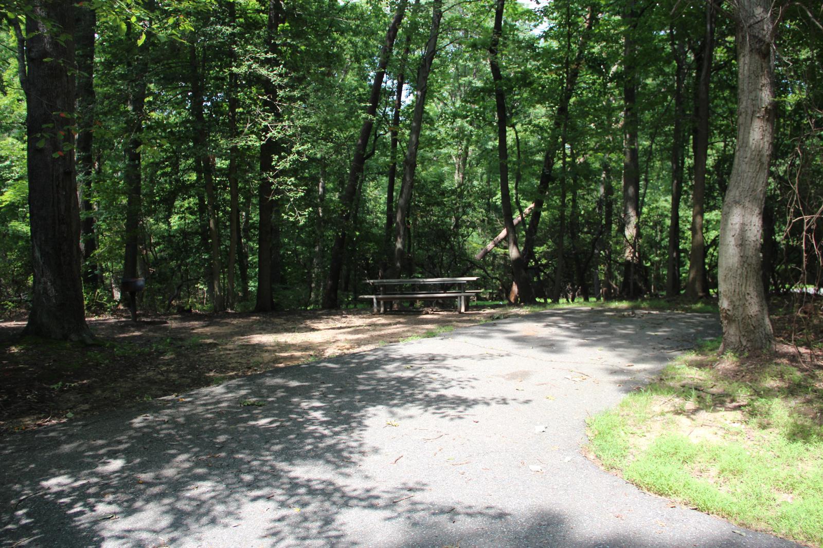 Greenbelt Park campground Site 45