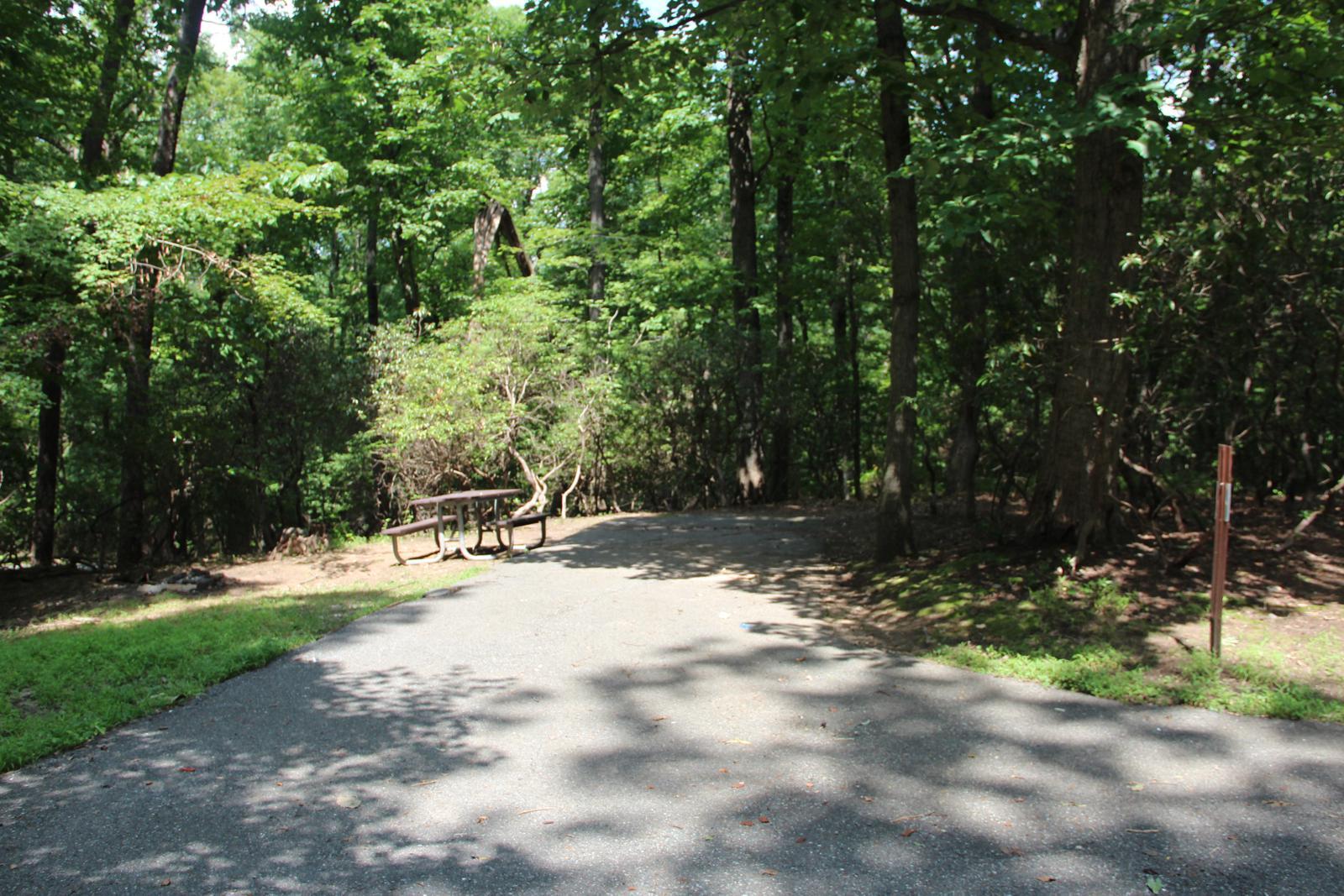 Greenbelt Park campground Site 47