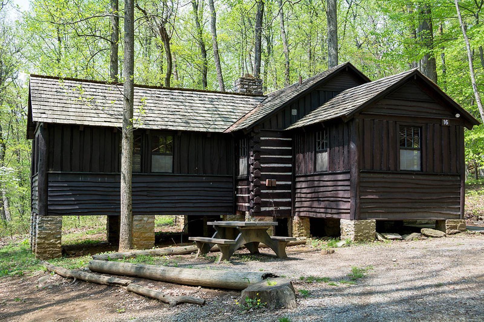 Camp Misty Mount Cabin 16