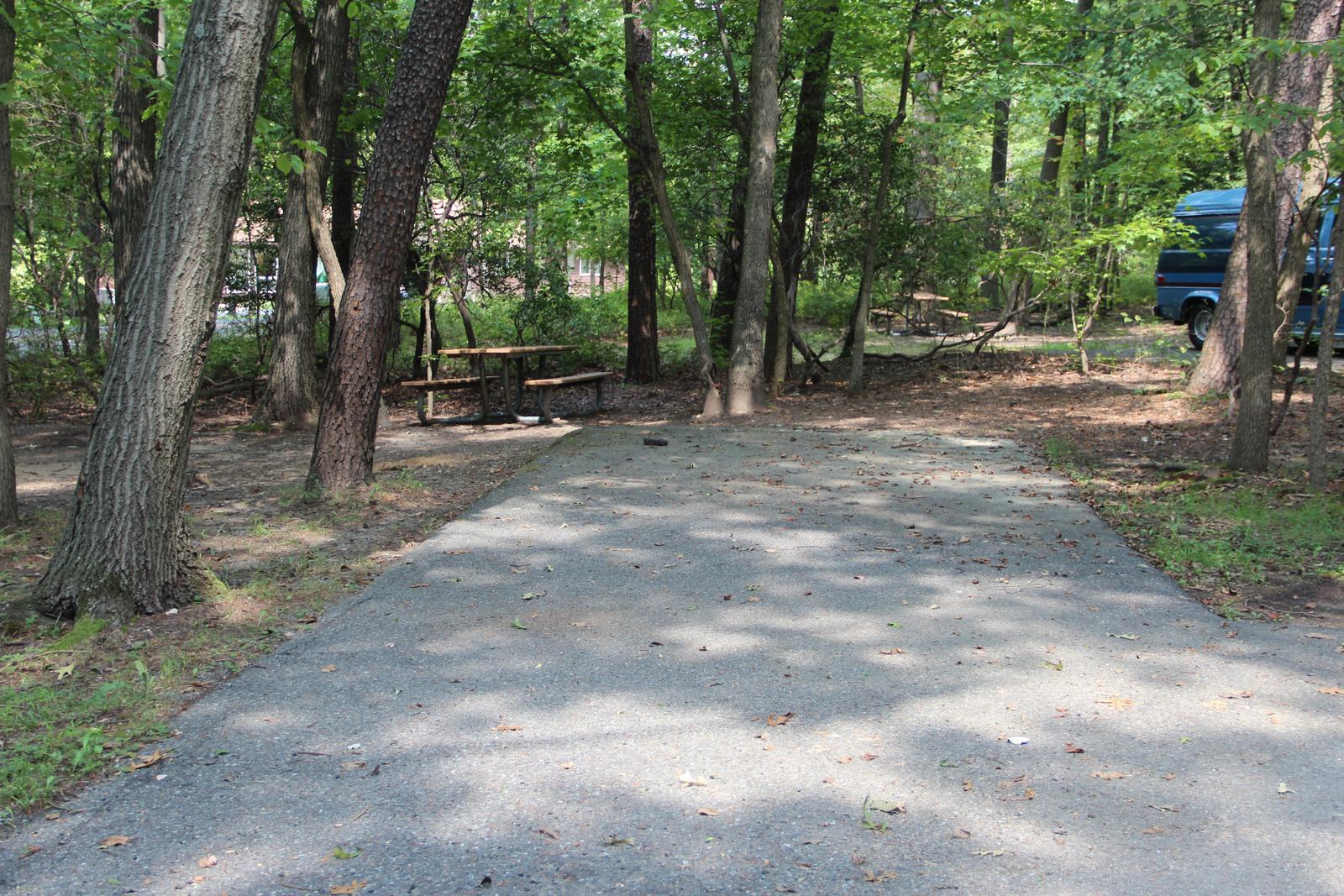 Greenbelt Park Campground Site 82