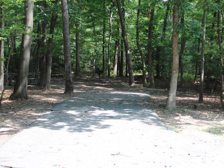 Greenbelt Park Campground Site 80