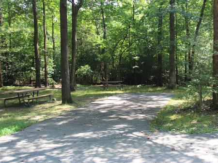 Greenbelt Park Campground Site 76