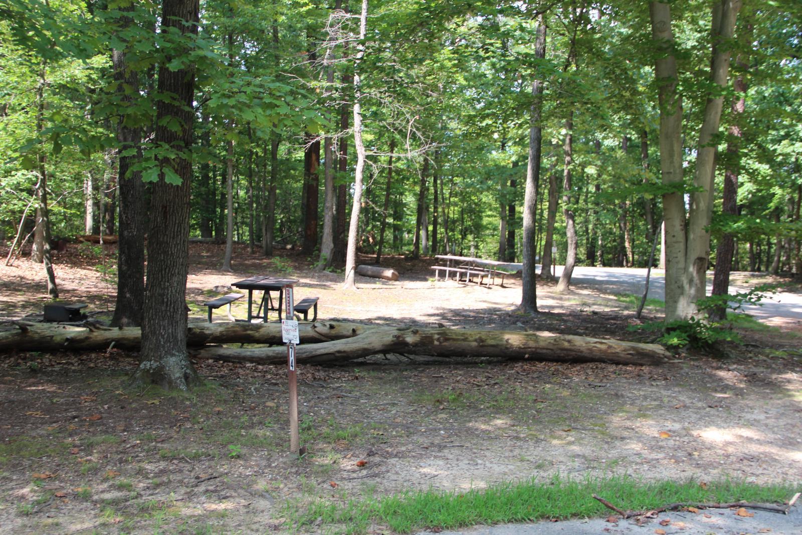 Greenbelt Park Campground Site 74