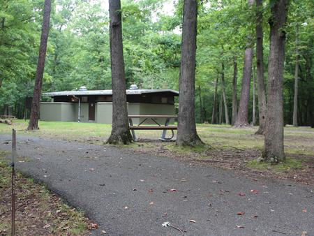 Greenbelt Park Campground Site 85
