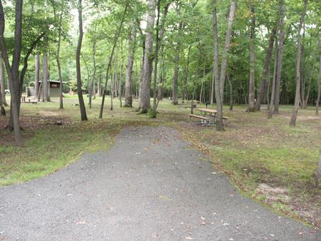 Greenbelt Park Campground Site 89