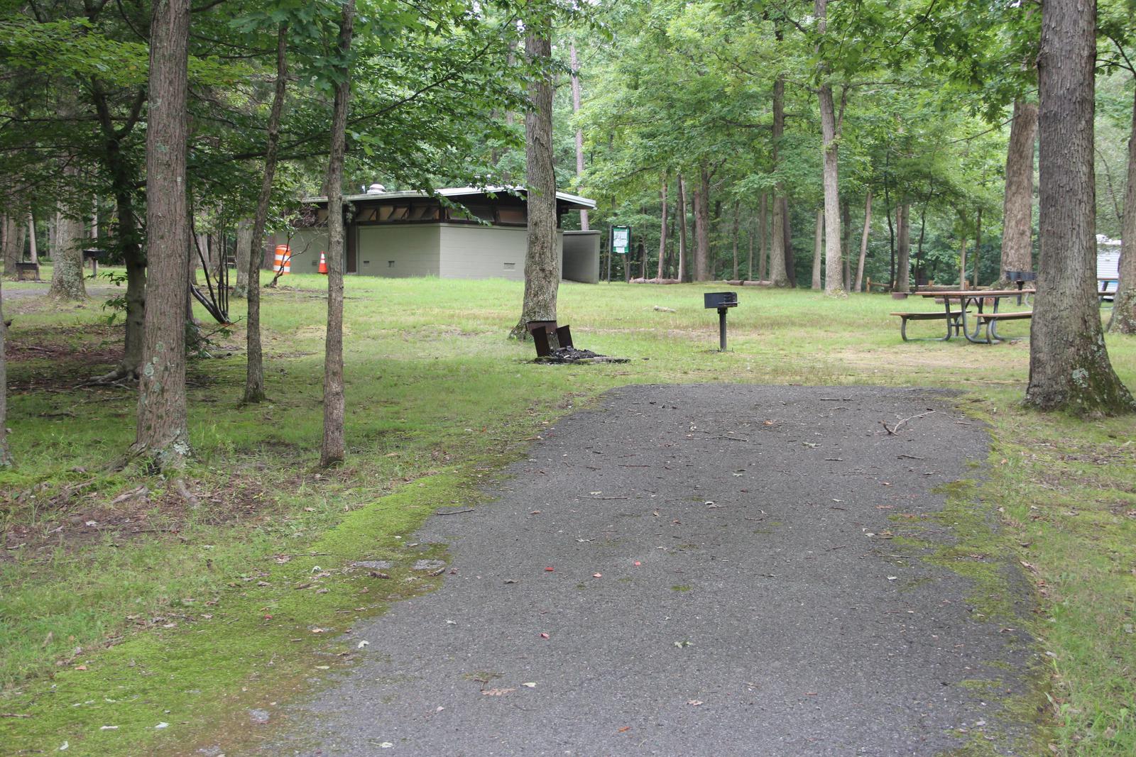 Greenbelt Park Campground Site 99