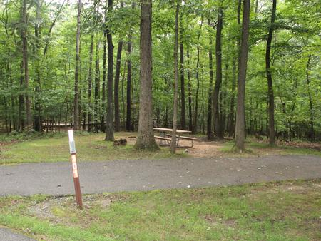 Greenbelt Park Campground Site 101