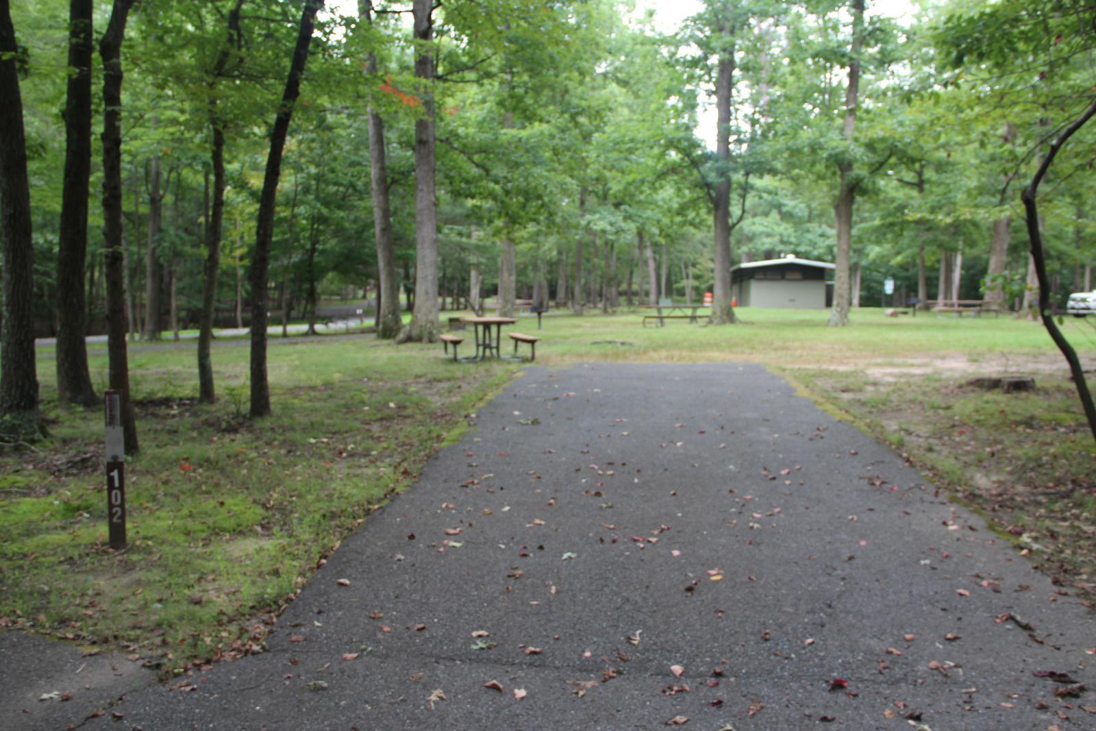 Greenbelt Park Campground Site 102