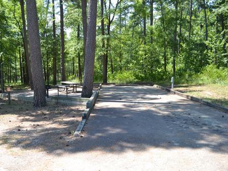 Jefferson Ridge Site 38Campsite 38