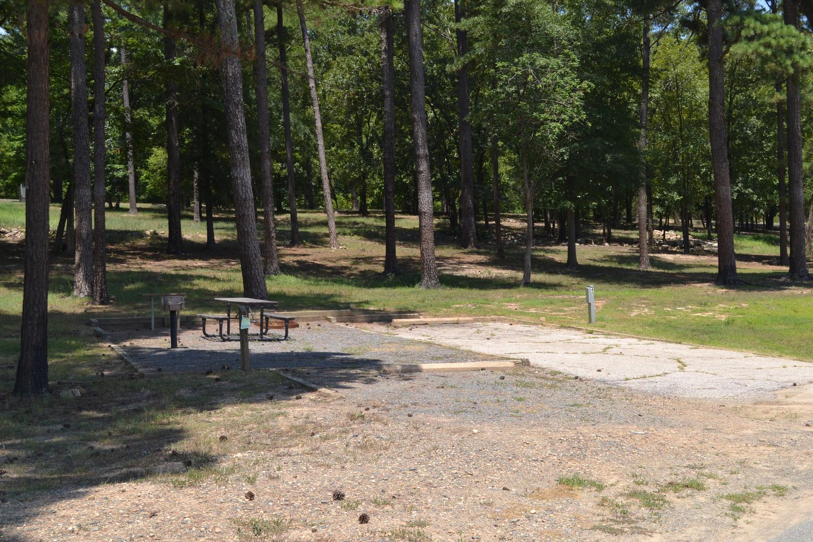 Jefferson Ridge Site 41