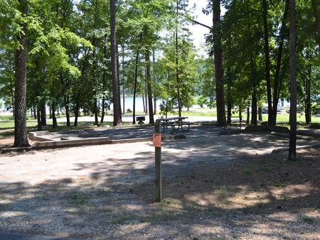 Jefferson Ridge Site 51Campsite 51