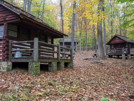 Two American chestnut log cabins. Surrounding trees show colorful fall foliage.  Dead leaves cover the ground.Camp Misty Mount is the ideal location to relax and enjoy the Fall foliage.