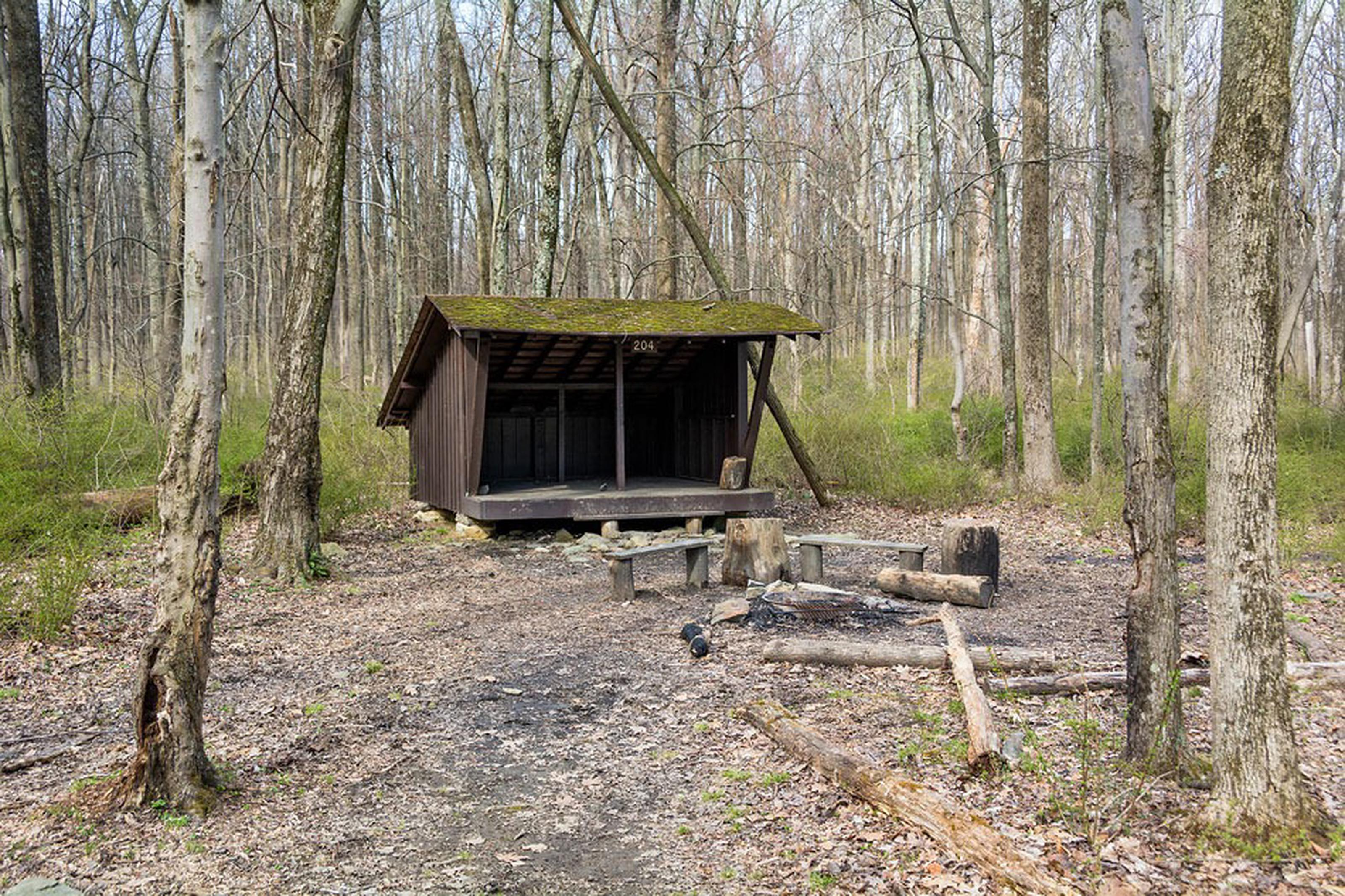 an adirondack shelter with campfire circle and wooden benches in front of itAdirondack shelter