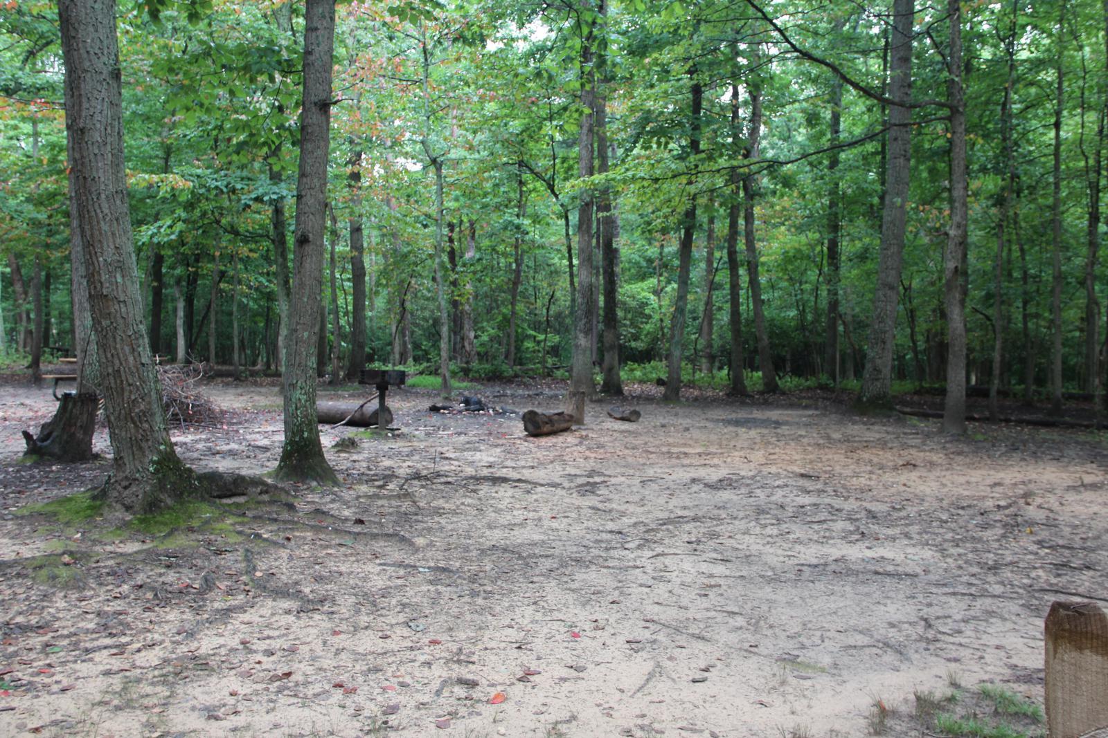 Greenbelt Park Campground Site 012