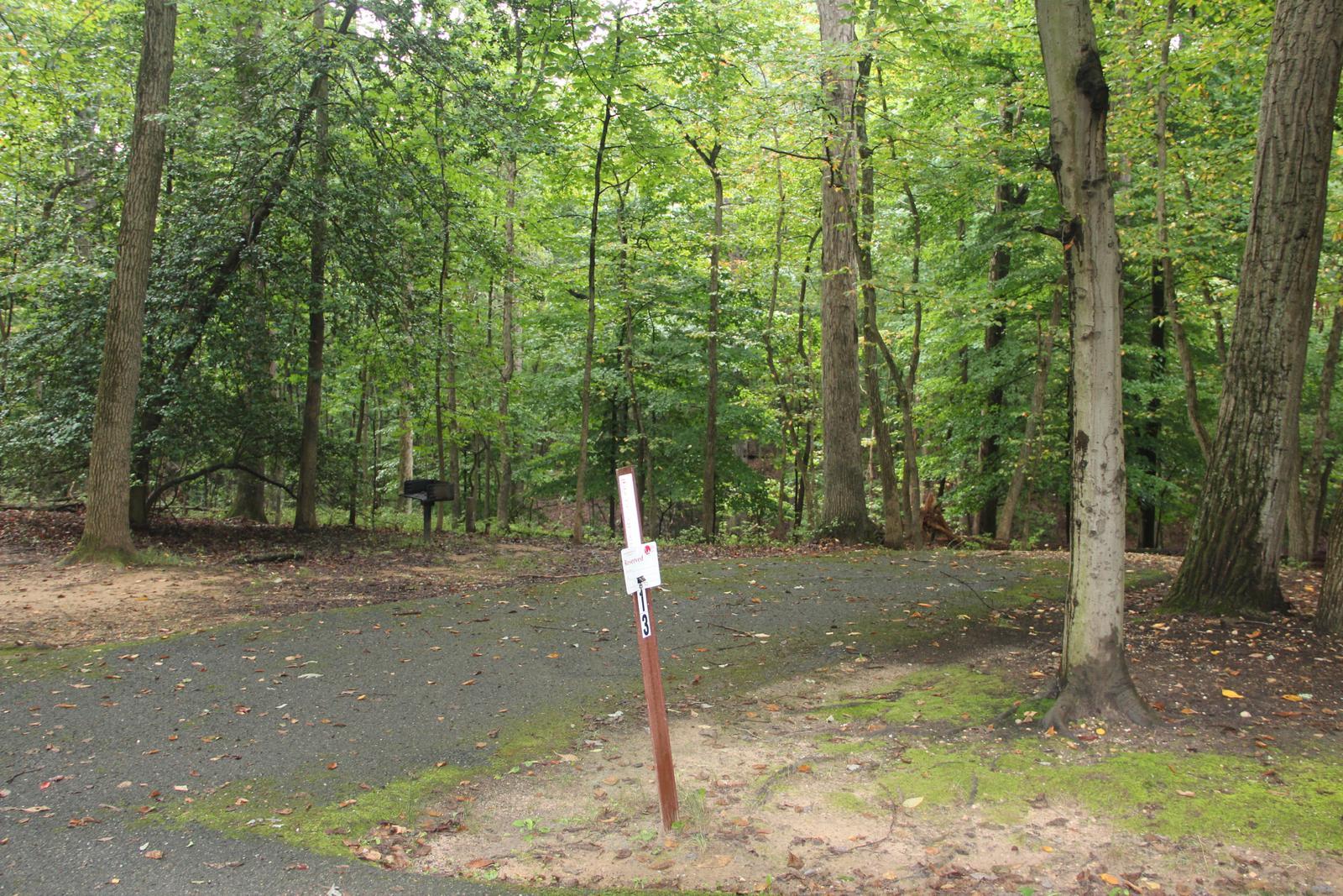 Greenbelt Park Campground Site 013