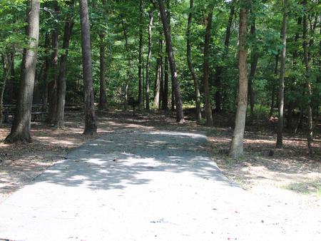 Greenbelt Park Campground Site 79