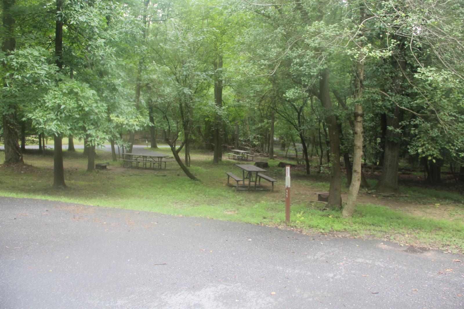 Greenbelt Park Campground Site 111