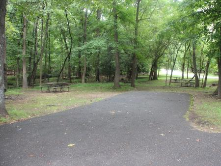 Greenbelt Park Campground Site 114