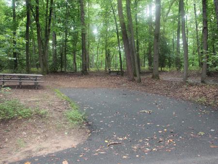 Greenbelt Park Campground Site 120
