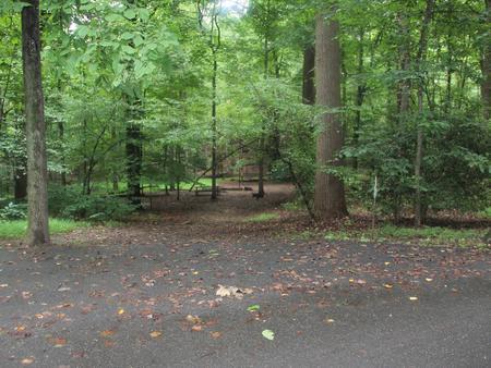 Greenbelt Park Campground Site 122