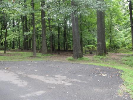 Greenbelt Park Campground Site 124