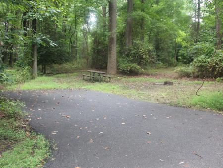 Greenbelt Park Campground Site 125