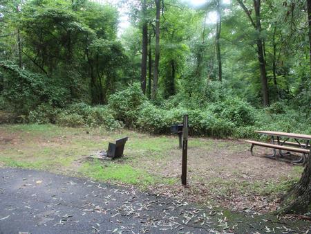 Greenbelt Park Campground Site 130