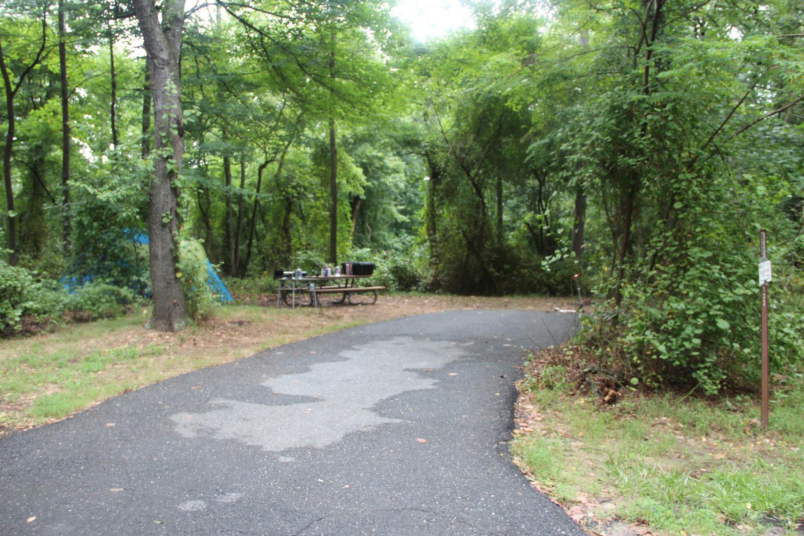 Greenbelt Park Campground Site 133
