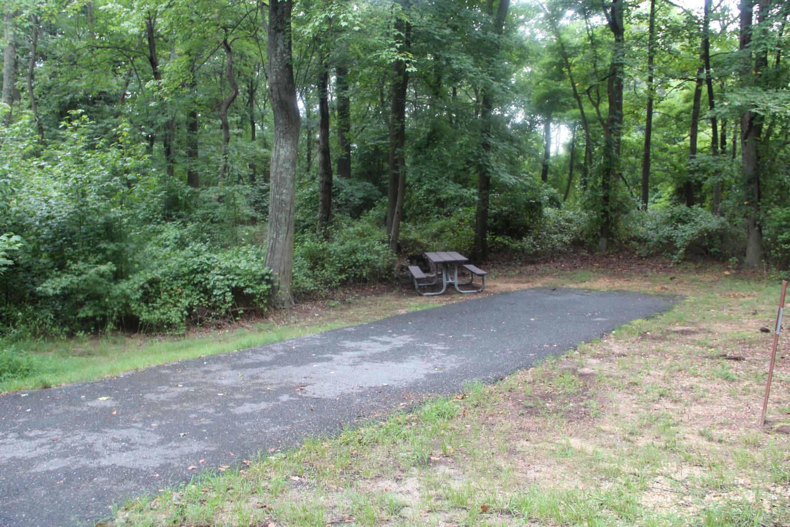 Greenbelt Park Campground Site 134