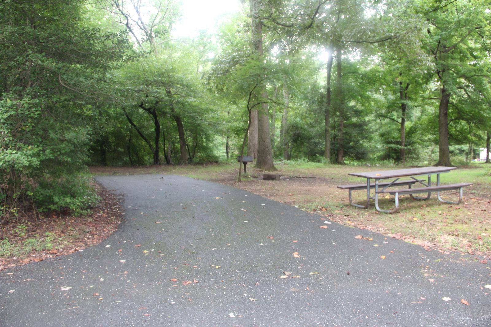 Greenbelt Park Campground Site 135