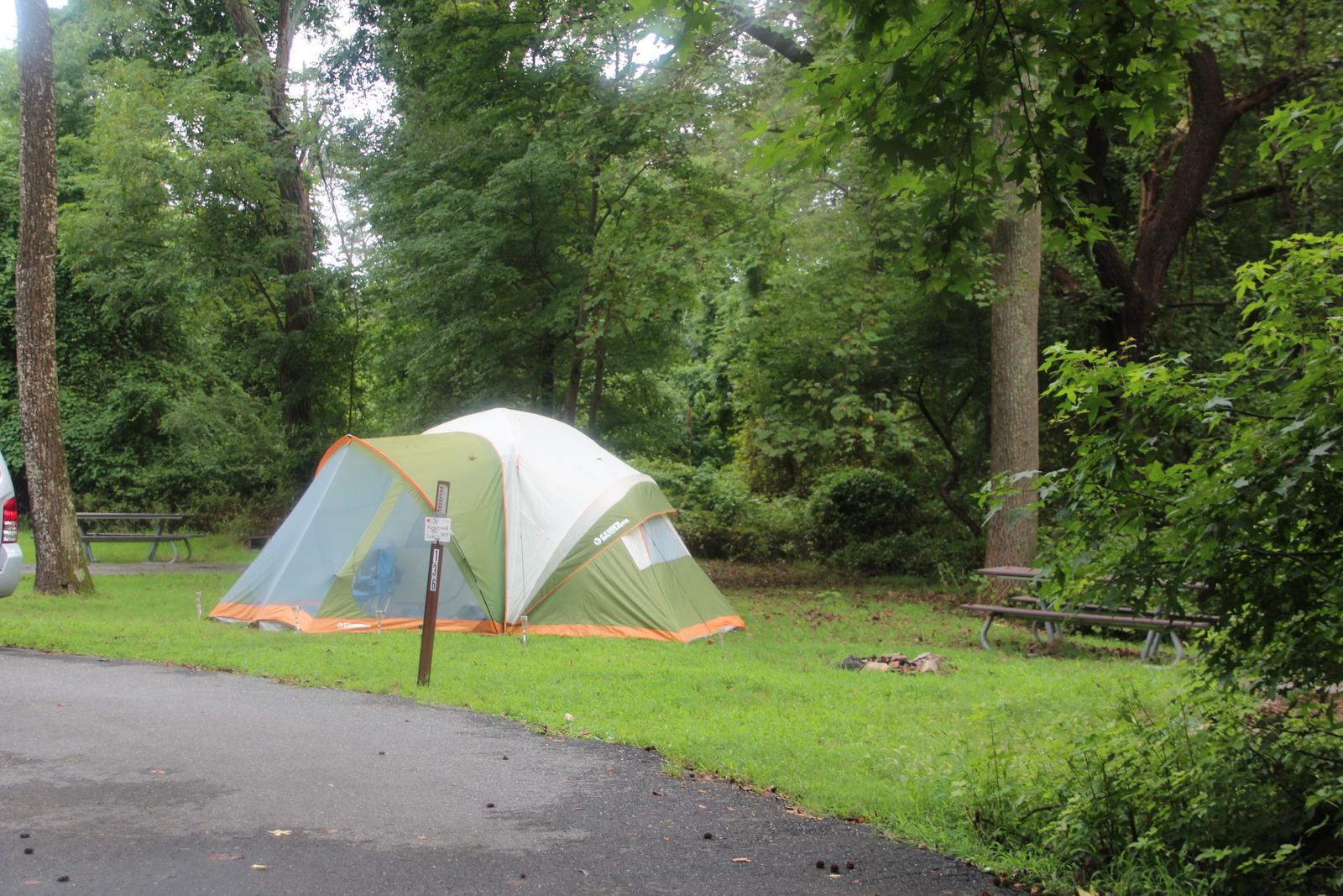 Greenbelt Park Campground Site 136